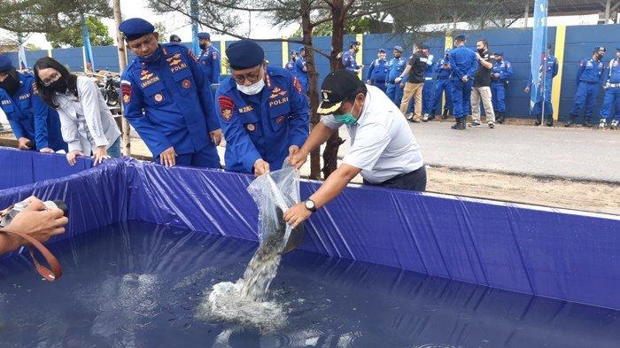 PT Timah Tbk Berikan Bantuan 6.000 Bibit Ikan untuk Dit Polairud Polda Bangka Belitung