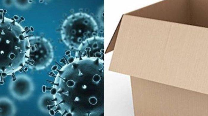 PEMBUNGKUS Paket Belanja Online Bisa Tularkan Virus Corona, Benarkah?