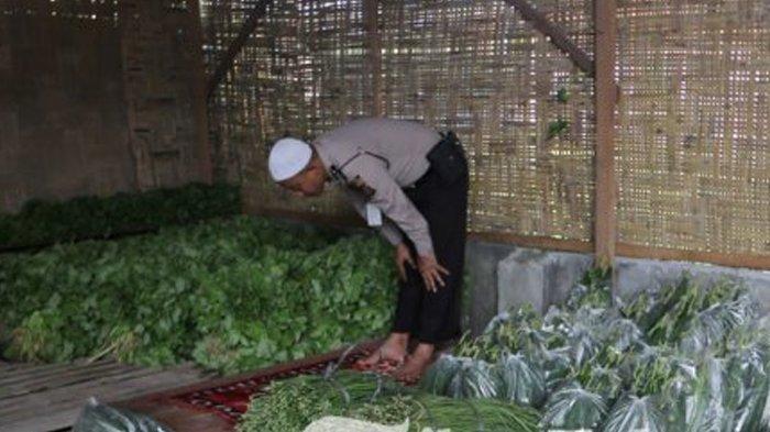 Inilah Kisah Inspirasi si Polisi Sayur, Bripka Wahyu Sampai Rela Gadaikan Rumah demi Petani
