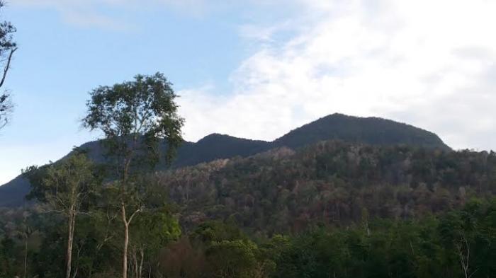 Mau Mengelola Air Terjun di Bukit Maras, Izin Dulu ke BKSDA