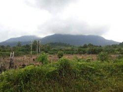Ambil Air di Tebing Puncak Bukit Maras, Mahasiswa STIE Ibek Hilang