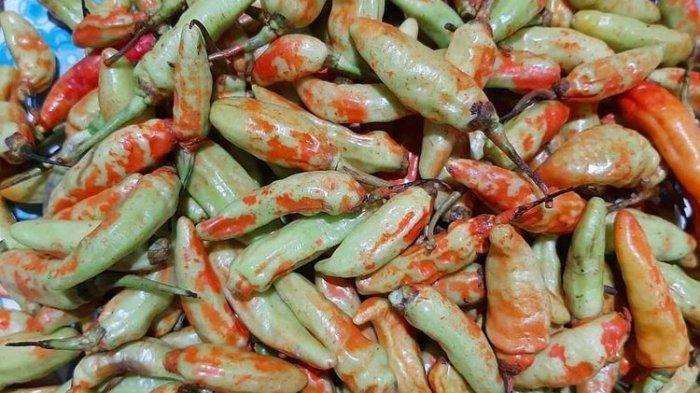 Cabai rawit bercat warna merah yang ditemukan di sejumlah pasar tradisional di Banyumas, Jawa Tengah.