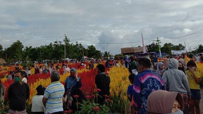 Suasana Celosia Garden Ake Kecamatan Sungailiat saat dipadati pengunjung pada Minggu sore (11/10/2020)