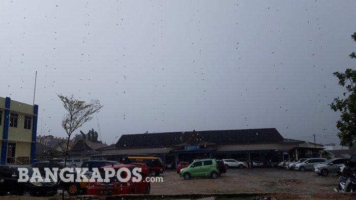 Hujan Lebat Angin Kencang Diperkirakan Terjadi di Bangka Belitung, Waspada Potensinya