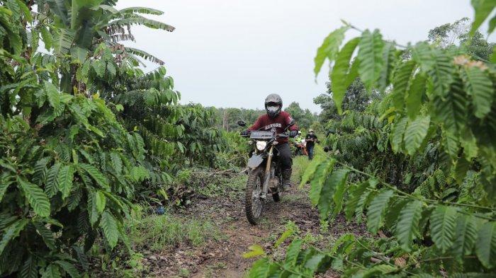 Aksi Gubernur Bangka Belitung Tunggangi Motor Trail Temui Masyarakat Petani