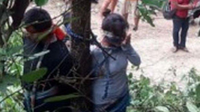 Kejam, Wanita Paruh Baya dan Putranya Ini Diikat di Pohon Yang Penuh Semut Api Ganas Hingga Tewas