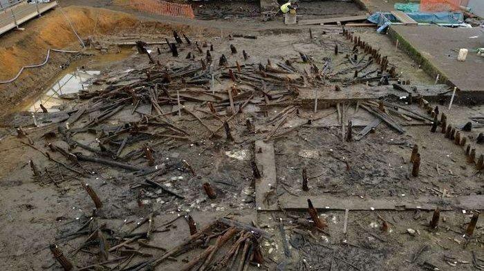 FOSIL Kotoran Kuno Ungkap Tubuh Penduduk Pompeii Inggris Dipenuhi Cacing Ini
