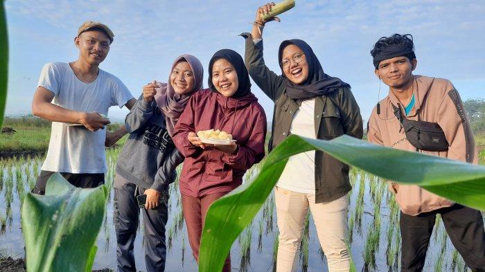 Para jurnalis Bangkapos.com saat berfoto di lahan padi di di kawasan Balunijuk, Merawang, Bangka yang diolah David