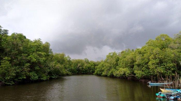 Merajut Asa Wisata Mangrove dan Kebun Buah Desa Rukam