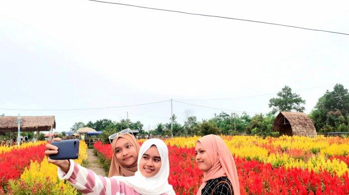 Keindahan destinasai wisata Celosia Garden Ake