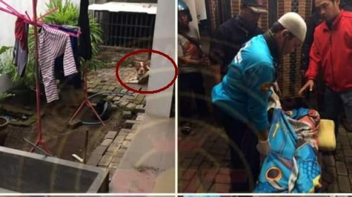 Polisi Cari Ibu Kandung Gadis Cilik yang Tewas Digigit Anjing Peliharaannya