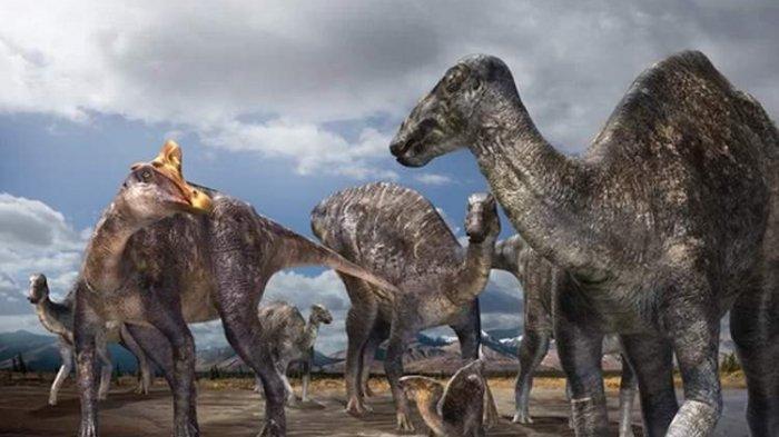 69 Juta Tahun Lalu, Dinosaurus Paruh Bebek Jambul Hidup di Kutub Utara
