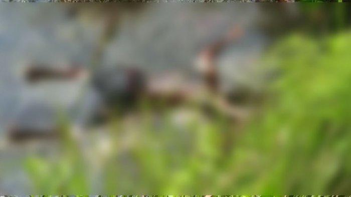 Mayat Mengapung di Kolong Desa Mangkol Bangka Tengah Punya Tato di Lengan Kiri