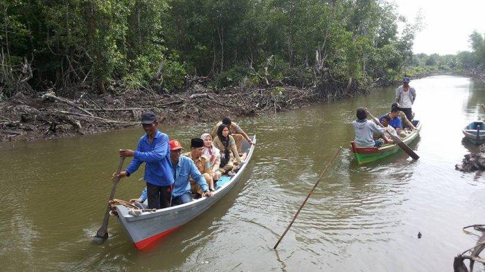 Hasil Foto Satelit Menunjukkan Hutan Mangrove Belinyu Masih Asri dan Rimbun