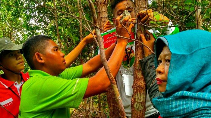Mahasiswa Tersesat dan Muncul Naga, Ini Pantangan dan Mitos yang Mewarnai Indahnya Bukit Maras
