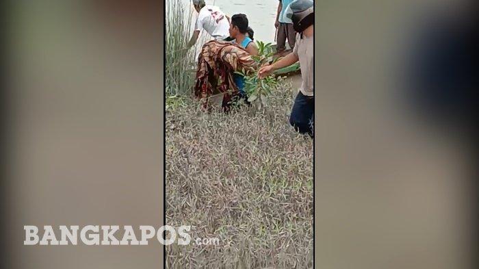 BREAKING NEWS : Wanita Korban Terkaman Buaya di Kolong Ranggi Asam Ditemukan Tanpa Tangan dan Kaki