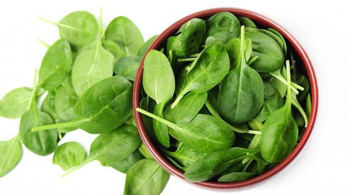Bisa Cepat Dipanen, Ini 3 Pilihan Sayuran Hidroponik