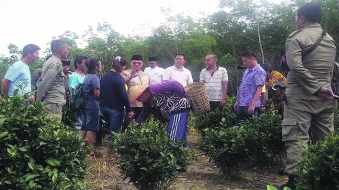 Desa Ketap Prioritaskan Pembangunan Berbasis Pemberdayaan