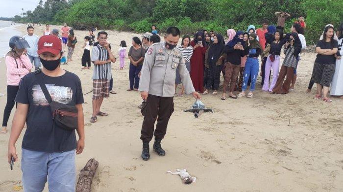 Jasad Bayi Perempuan di Pantai Guntung Telah Dikebumikan, Polisi Masih Memburu Pelaku