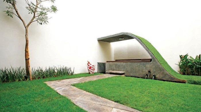 Percantik Pekarangan Rumah, Pahami Fungsi 7 Jenis Rumput Hias Ini