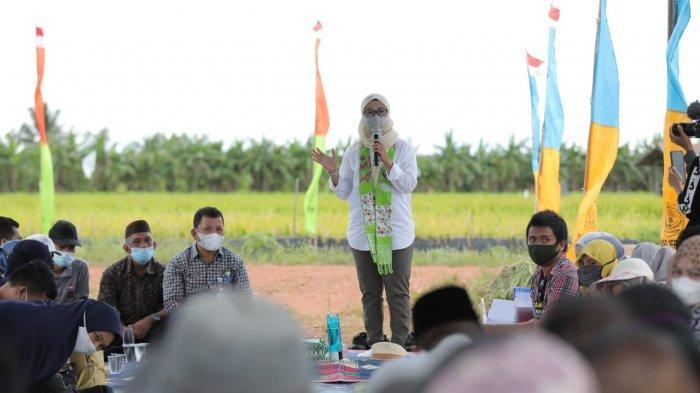 Kunjungi Persawahan Desa Serdang, Melati Bersilaturahim, Tatap Muka dan Diskusi dengan Gapoktan