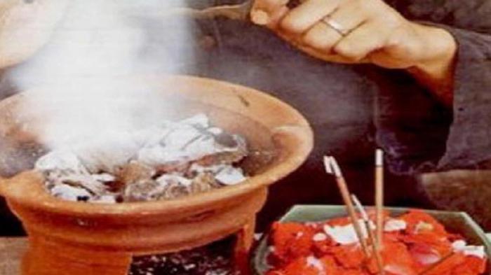 Inilah 5 Tanaman yang Ditakuti Jin dan Setan, Ampuh Tangkal Sihir dan Santet