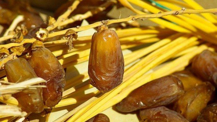 Ilustrasi buah kurma