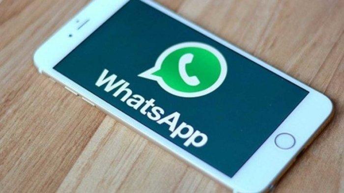 Fitur Baru WhatsApp, Ini Cara Mudah Buat Video Boomerang & Diunggah Jadi Status, Mirip Instagram