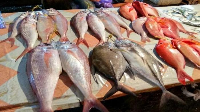 Stok Terbatas dan Mahal, Pemda Kabupaten Belitung Adakan Bazar Ikan Sebanyak Dua Kali