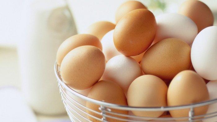 Jangan Konsumsi Telur Bersamaan dengan 5 Makanan Ini Jika Tidak Ingin Keracunan