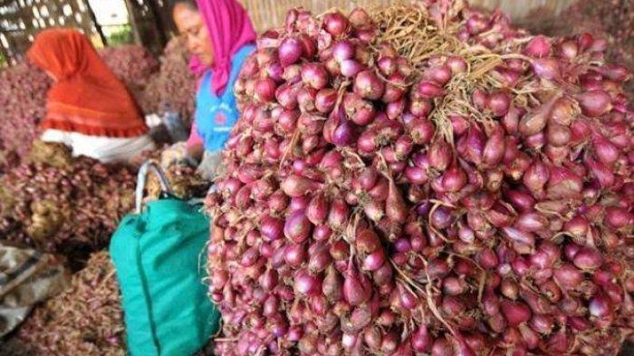 Harga Bumbu Dapur di Pasar Pangkalpinang Jelang Idul Adha, Termasuk Bawang Merah dan Cabai