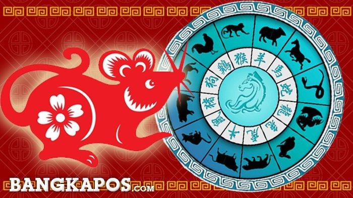 Ramalan dan Prediksi 12 Shio pada Rabu, 3 Februari 2021, Hari Ini Terbaik untuk Tikus