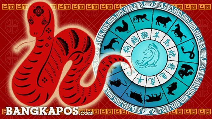 Ilustrasi shio ular