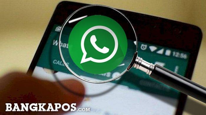 DAFTAR Ponsel Jenis Ini Tak Bisa Pakai WhatsApp pada Tahun 2021
