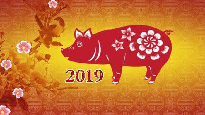 Imlek 2019, Ramalan 12 Shio di Tahun Babi Tanah, 4 Shio ini Nggak Jomblo dan Segera Punya Pasangan