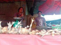Meroketnya Harga Ayam di Pasaran Gerogoti Laba Pengusaha Ayam Geprek