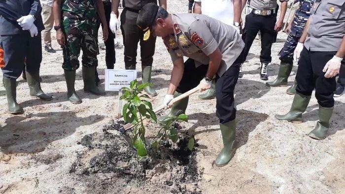 Tanam Pohon di Areal Reklamasi PT Timah Tbk, Kapolda Bangka Belitung Ingatkan Jangan Digali Lagi!