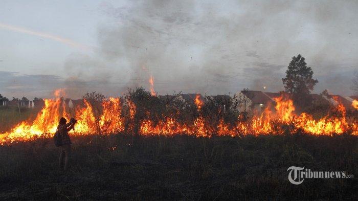 BMKG Prediksi Belum Banyak Titik Panas Timbulkan Karhutla di Bangka Belitung, Ini Daerah yang Rawan