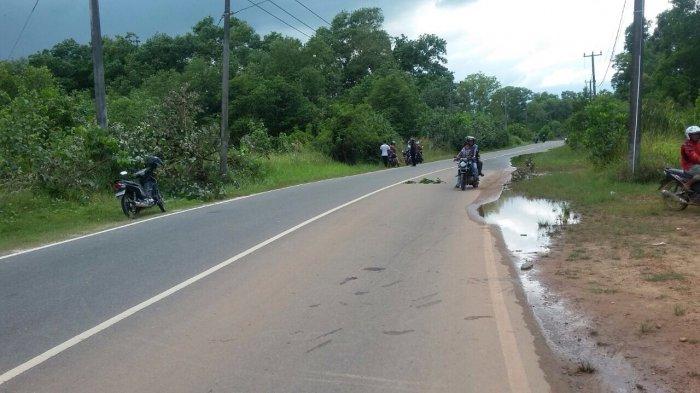 Diduga Terpengaruh Minol, Pengendara Sepeda Motor Ini Terjatuh  Dari Motornya