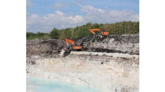 DS alias AMK Tersangka Kasus Penambangan Ilegal di Kawasan Hutan di Bangka DPO KLHK