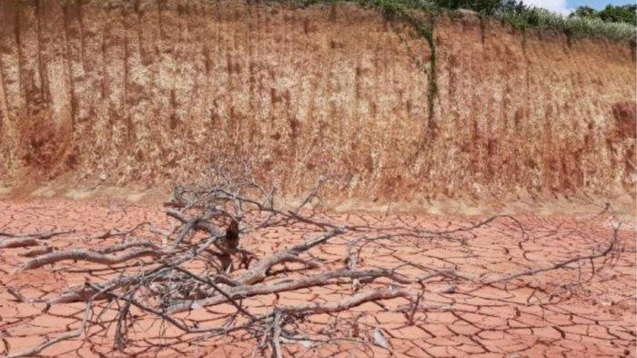 Hakim PN Koba Putuskan Pidana Berlapis ke Azeman, Menambang di Kawasan Hutan Tanpa Izin Menteri
