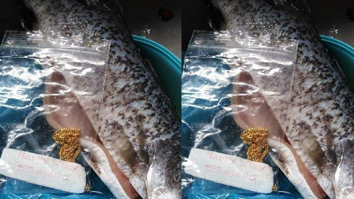 Tangisan Bahagia MunirahTemukan Kalung Emas di Perut Ikan, Ternyata Kado Ulang Tahun Suami