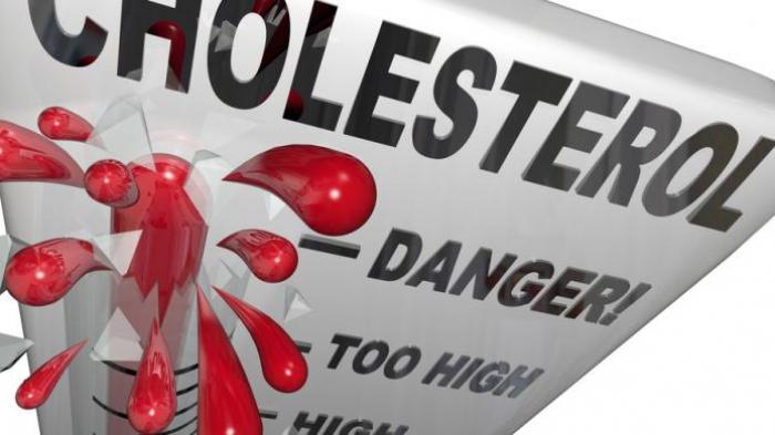 Inilah 13 Resep Sayuran untuk Melarutkan Kolesterol