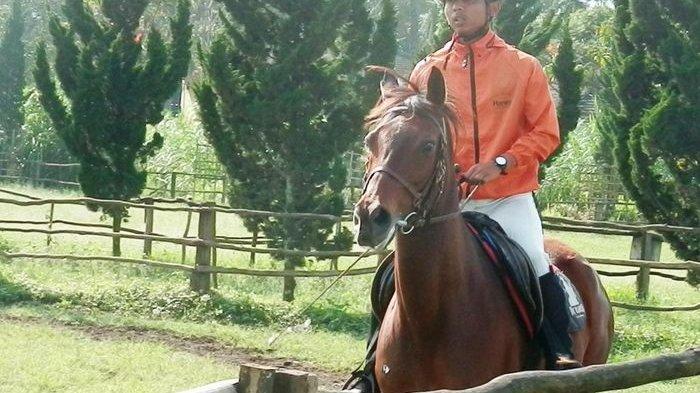 Bertanding di Asian Games 2018, Begini Perlakuan pada Kuda Rp 200 Miliar dan Perawatannya