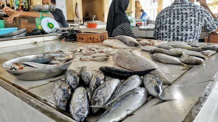 Mudah Banget Hilangkan Bau Amis Ikan Tidak Perlu Pakai Sabun Cukup Gunakan Odol Begini Caranya