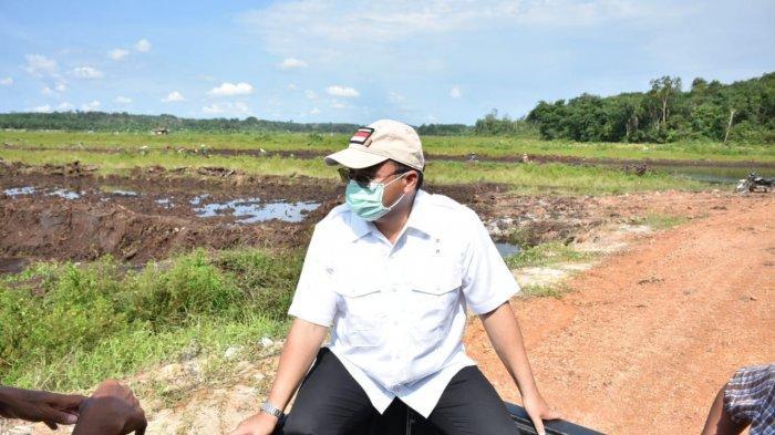 Gubernur Bangka Belitung Telusuri Penyebab Keracunan Padi di Sawah Batu Betumpang