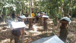 DPRD Babel Minta Pemda Kembangkan Sentra Madu Pelakat untuk Wisata Edukasi