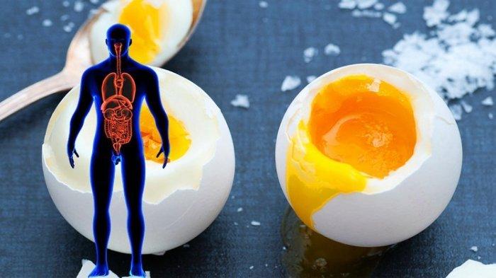 Jangan Takut Kolesterol, Sarapan Telur Tiap Hari Bisa Tambah Jreeng Loh