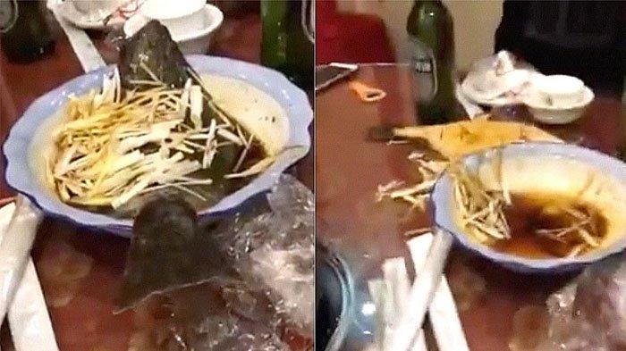 Waduh, Ikan Ini Loncat Saat Hendak Dimakan, Padahal Sudah Dimasak Matang-matang