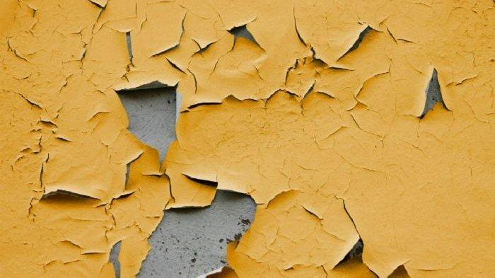 Dapat Dilakukan dengan Mudah, Ini 4 Cara Hilangkan Semua Jenis Noda Pada Dinding Rumah